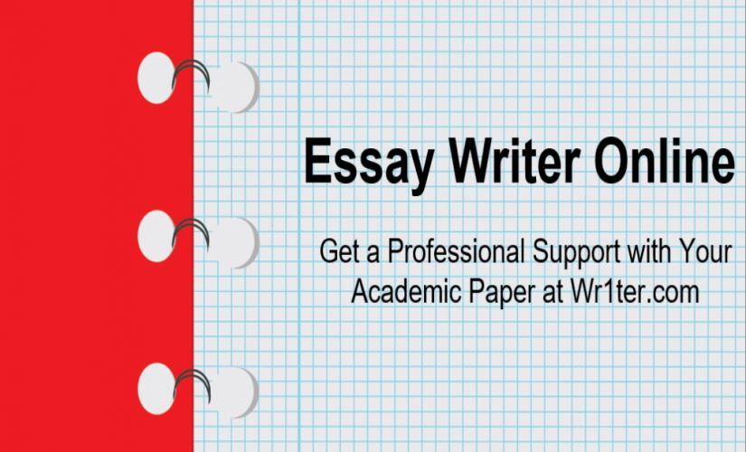 Essay writer online